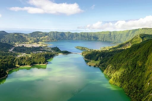 A bay of water surrounded by green trees